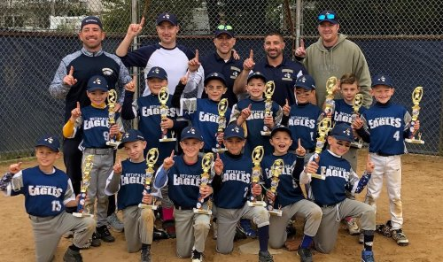 LSW Fall Series 8u Champs!